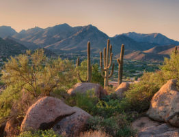 Brief History of Phoenix, Arizona